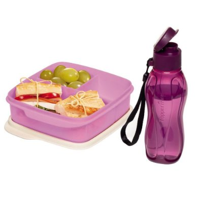 Tupperware Kit Basic Line 500ml + Eco Tupper 310 ml