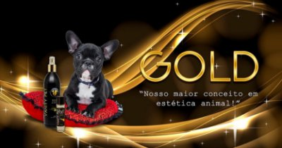 VANITY PET - DEO COLONIA GOLD 500ML