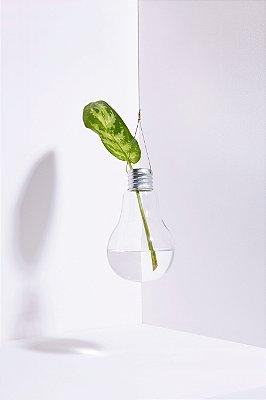 vaso lâmpada suspensa