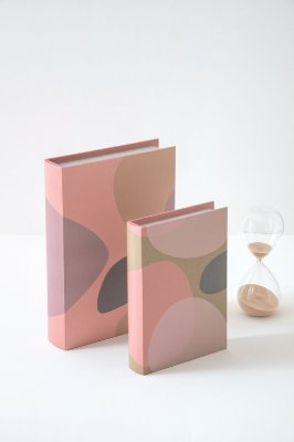 dupla caixa livro joy