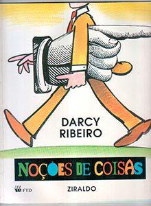 NOÇÕES DAS COISAS DE DARCY RIBEIRO E ZIRALDO