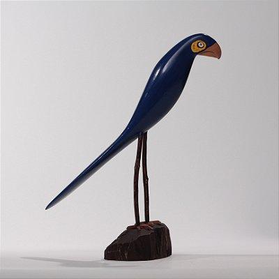 Arara Azul sem Detalhe  2