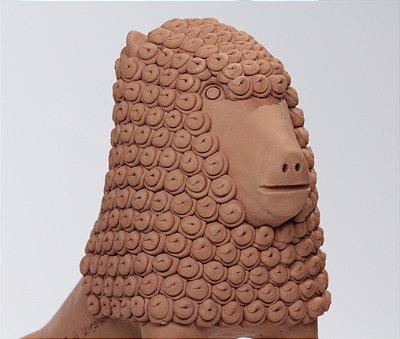 Leão de Juba Cacheada GG