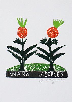 Xilogravura J. Borges Ananá P - PE