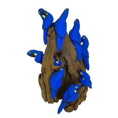 Tronco Com 10 araras azul- MS