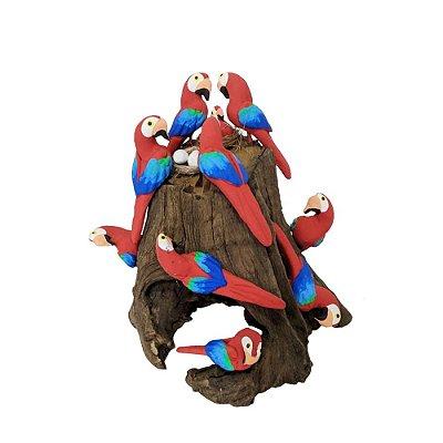 Tronco Com 10 araras vermelhas- MS