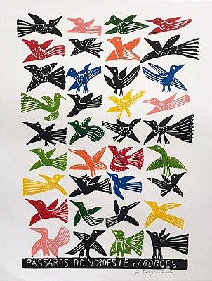 Xilogravura J. Borges Pássaros do Nordeste G - PE