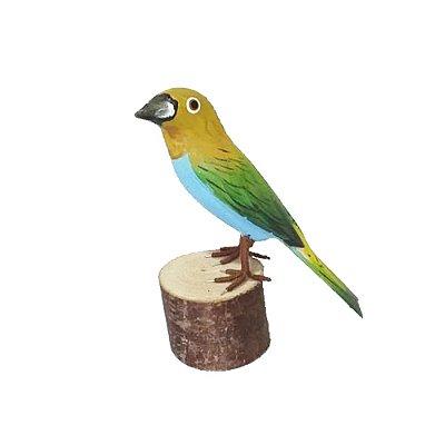 Sanhaço Amarelo de Madeira M - José MG
