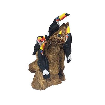 Tronco Com 6 tucanos - MS