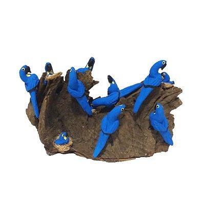 Tronco Com 10 araras azuis - MS