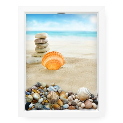 Quadro Porta Conchas  Shell And Rocks