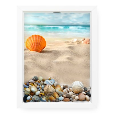 Quadro Porta Conchas  Shell And Sand