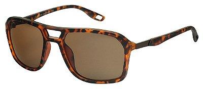 Óculos de Sol Masculino AT 77215 Tartaruga