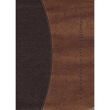 BIBLIA DE ESTUDO ANOTADA, A - EXPANDIDA-11106