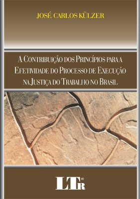 CONTRIBUICAO DOS PRINCIPIOS PARA A EFETIVIDADE DO PROCESSO DE EXECUCAO NA J