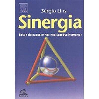 SINERGIA - FATOR DE SUCESSO PARA O APRENDIZADO ORGANIZACIONAL