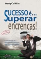 SUCESSO E... SUPERAR ENCRENCAS! - AS TURBULENCIAS SAO OPORTUNIDADES PARA QU