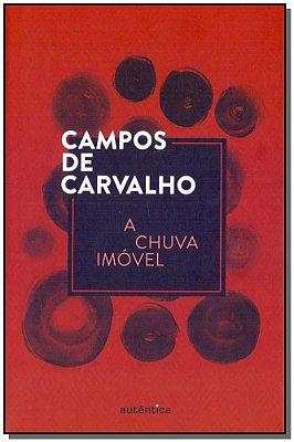 CHUVA IMOVEL, A