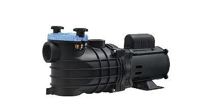 Bomba para Piscina Schneider Monofásica EKO 3/4CV - 127/220V