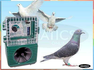Repelente Profissional Espantar Pica-paus Pombos Andorinhas