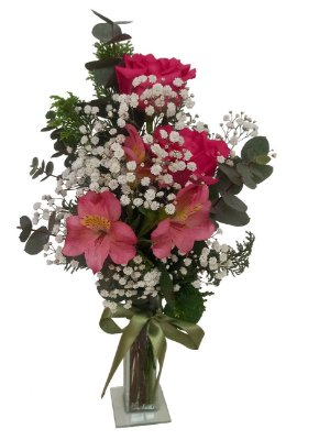 Mimo de Astromélia e rosas