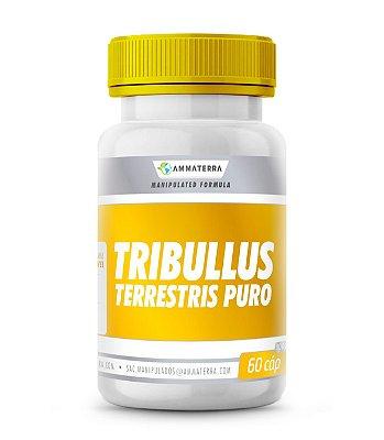 Tribullus Terrestris Puro 1000mg 60 Cápsulas ( tratamento da impotência e também como estimulante  para auxiliar o aumento do impulso e desempenho sexuais)