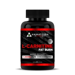 L-Carnitine Fat Burn 60 Capsulas