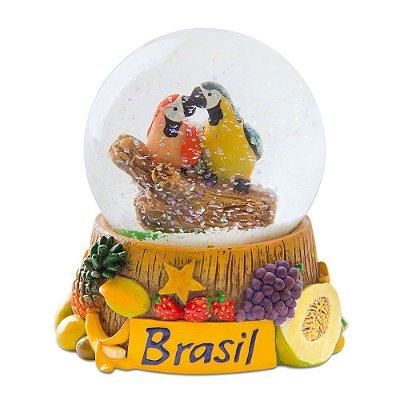 Globo de neve araras - Brasil