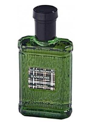 Handsome For Men Paris Elysees - Perfume Masculino 100ML