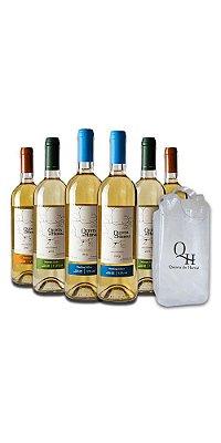 Compre Caixa Mix de Vinhos Brancos - 6 unidades e ganhe uma sacola cooler