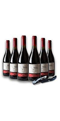 Compre 6 Vinhos Tintos Pinot Noir - Quinta do Herval e ganhe um saca-rolhas