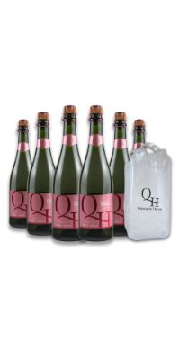 Compre 6 Espumantes Rosé Brut - Quinta do Herval e ganhe uma sacola cooler