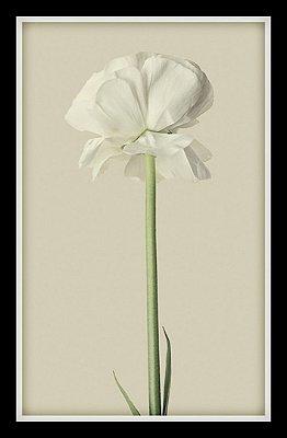 Quadro Decorativo Natureza Flores 1