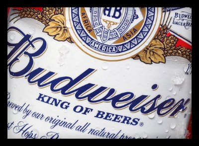 Quadro Decorativo Bebidas Budweiser