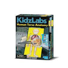 Brincando de Médico - Anatomia do Corpo Humano - 4M