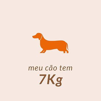 7,0 Kg