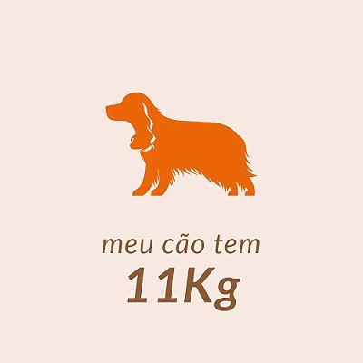 11,00 Kg