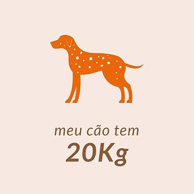 20,00 Kg