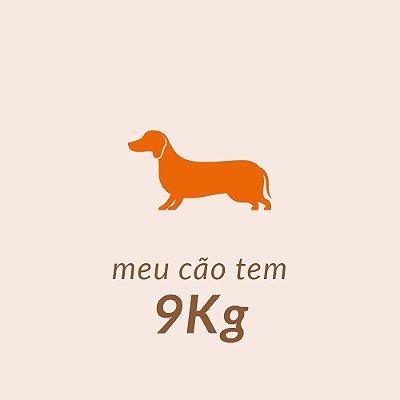 9,0 Kg