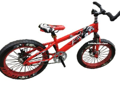 Fat Bike Infantil TF Boys Wolf