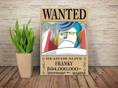 Placa Decorativa Procurado Franky - One Piece