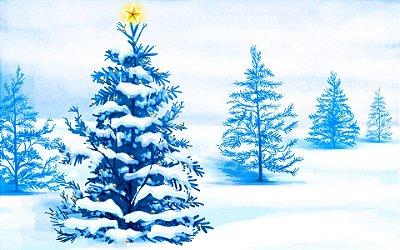 Fundo fotográfico - Árvore de Natal 6 (1,50 x 2,10 metros)