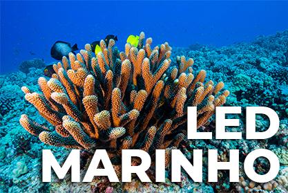 LED Marinho