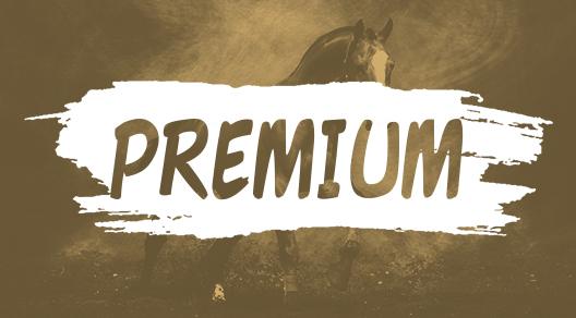Mini Premium