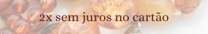 2x sem juros_300x50
