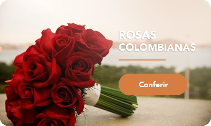mini banner - Rosas Colombianas