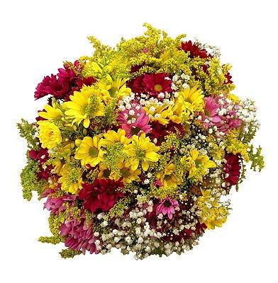 Buquê com Flores do Campo (Margaridas Coloridas, Cravos, Mosquitinhos e Mix de Folhagem)