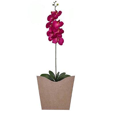 Orquídea phalaenopsis Roxa no Cachepot Para Presente
