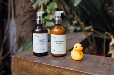 Shampoo e Condicionador Vegano para Cachorro de Camomila