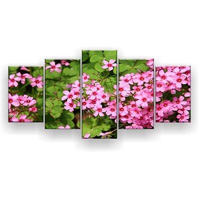 Quadro Decorativo Saxifraga Rosa 129x61 5pc Sala
